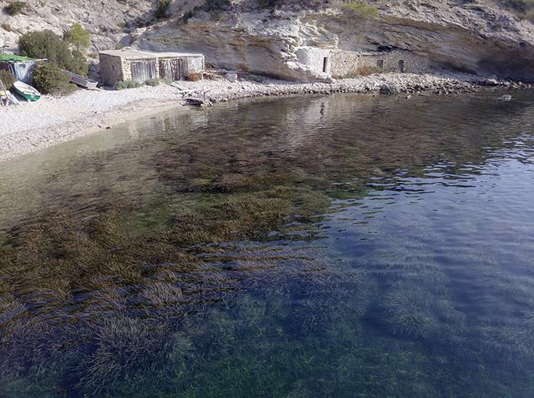 Excursión en catamarán a la Isla Espalmador, Islas Baleares. Ruta en catamarán.