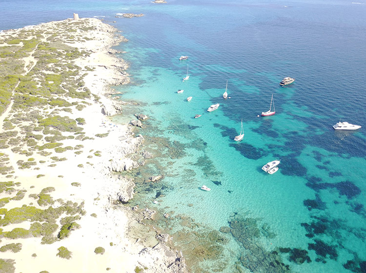 Les Salines 4 one day catamaran cruises